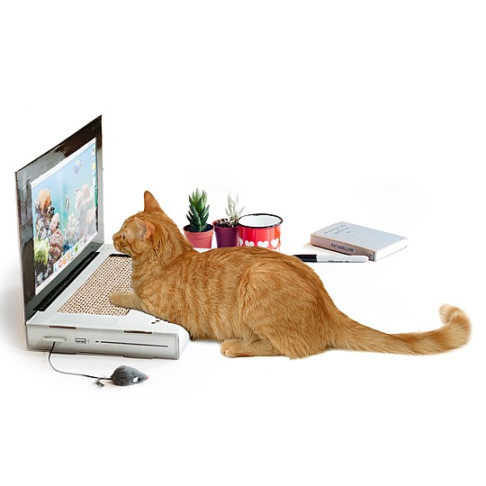 Un rascador de cartón para gatos geek