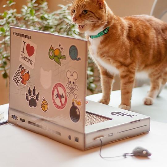 Incluye un ratón de juguete