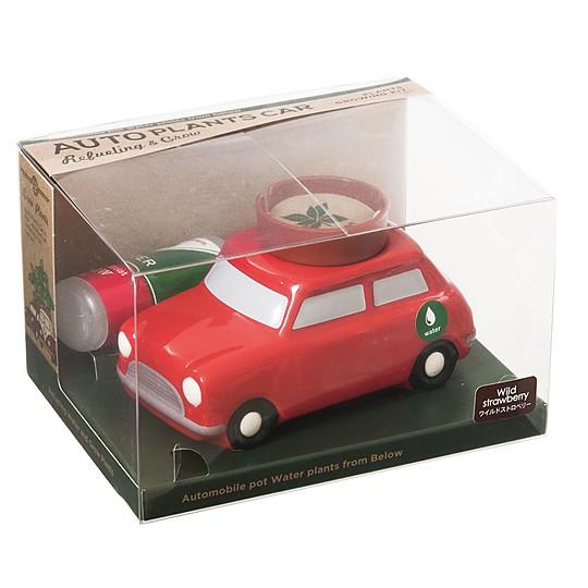 Embalados en una bonita caja transparente