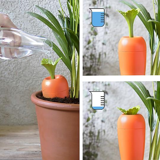 Las hojas de la zanahoria indican el nivel del agua