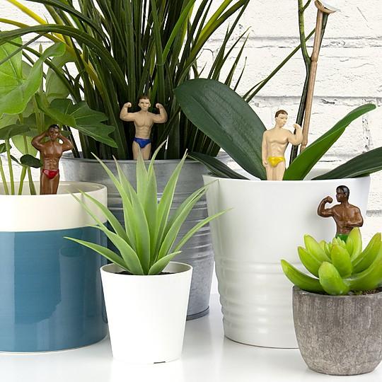 Decoración original para tu jardín interior