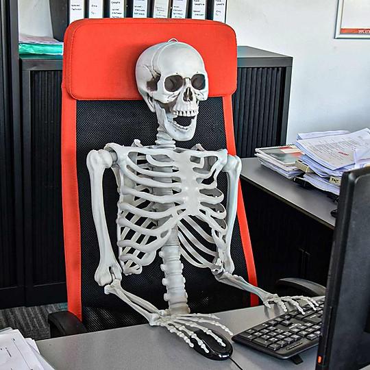 Un esqueleto humano en tamaño natural