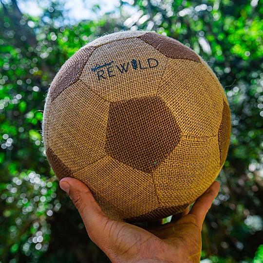 El balón de fútbol ecológico