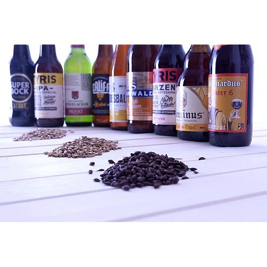 El mejor pack para descubrir el mundo de la cerveza