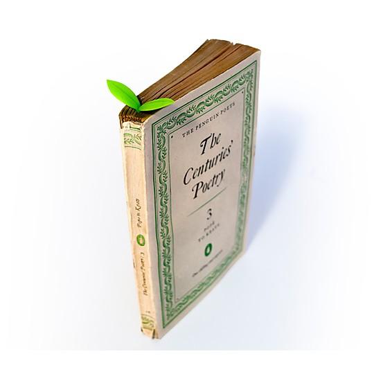 Da un toque fresco a tus lecturas