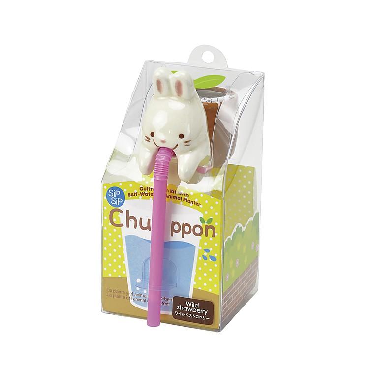 Maceta con autorriego conejo chuppon - Macetas con autorriego ...