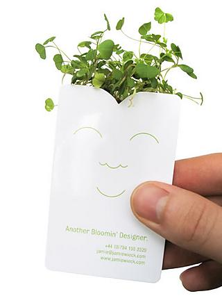 Jamie Wieck's business card planter