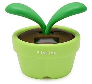 La planta Flip Flap se mueve al recibir luz solar