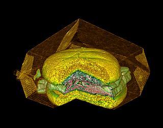 This hamburger has been X-rayed